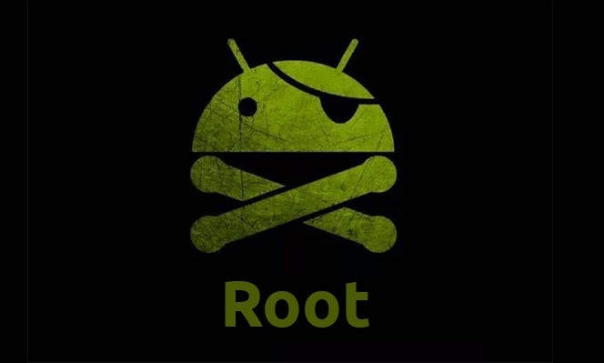 Imagen 2 Root