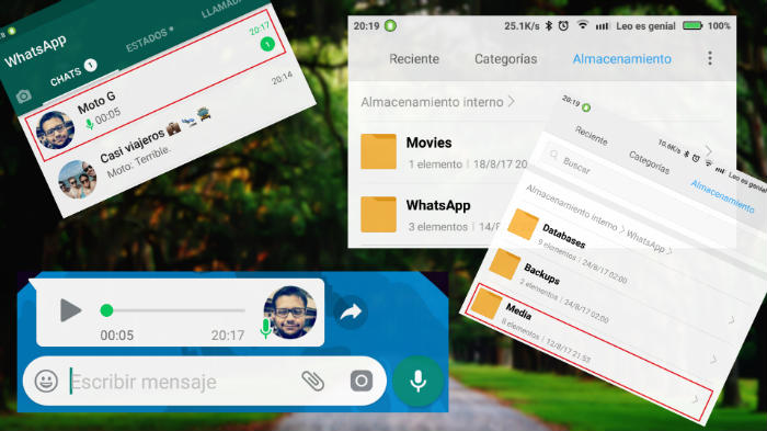 Escuchar audios de Whatsapp sin ser detectado