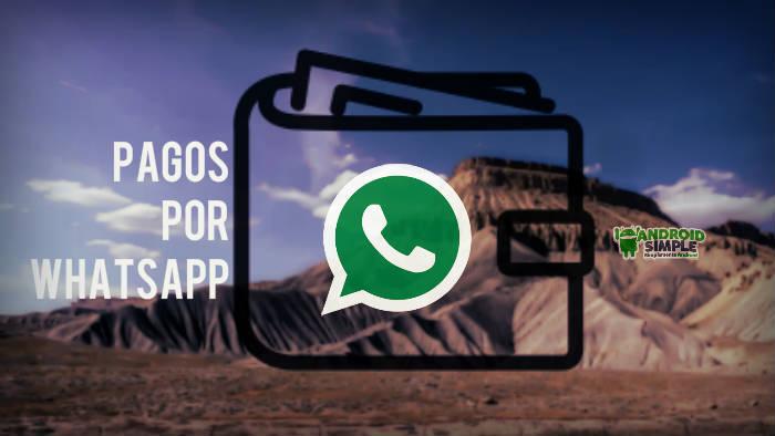 Pagos por Whatsapp